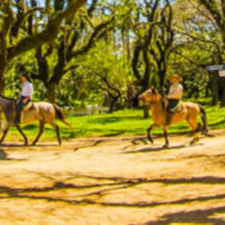 Conheça o melhor da Copa em Porto Alegre e divirta-se!