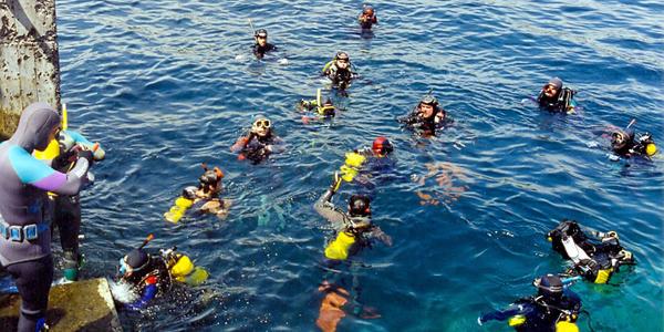 Mergulho - Angra dos Reis - RJ
