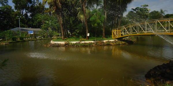 Parque do Sabiá - Uberlândia - MG
